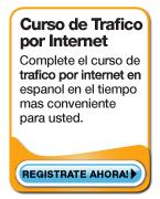 Curso de trafico por internet en espanol.